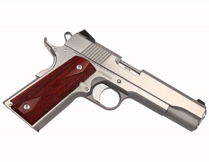 Dan Wesson Razorback RZ-10, 10mm, SS