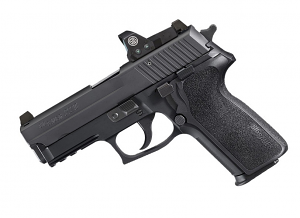 Sig Sauer P229 RX, 9mm, Night Sights, DA/SA