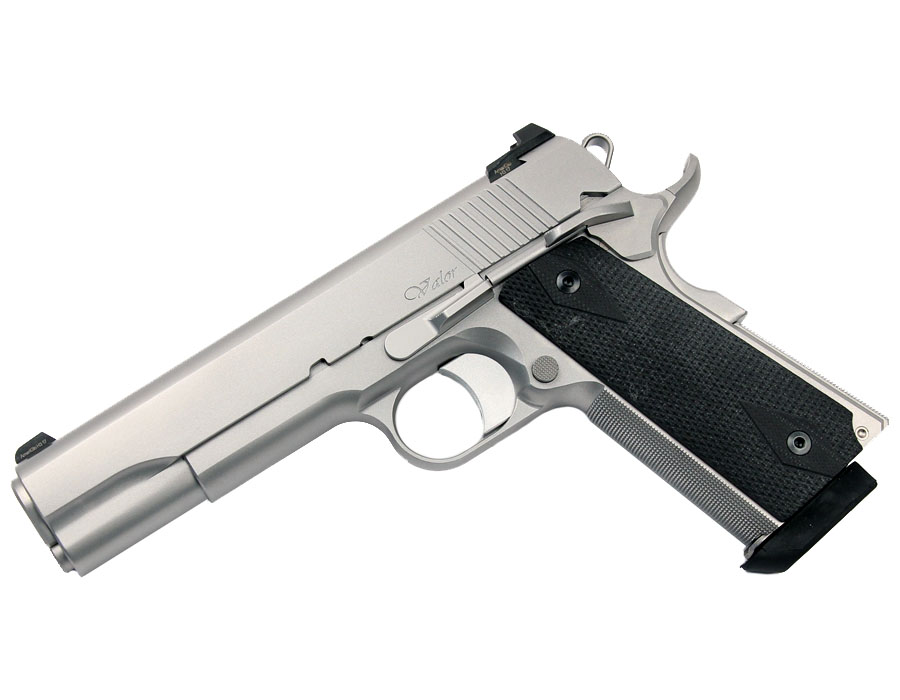 Dan Wesson Valor, 10mm, SS