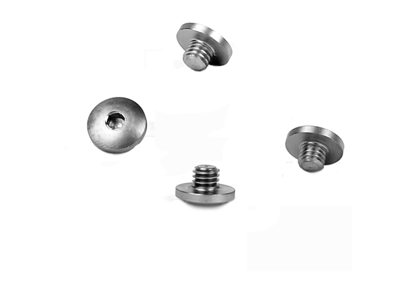 Hogue Grip Screw - P220/P225/P230/245- STAINLESS
